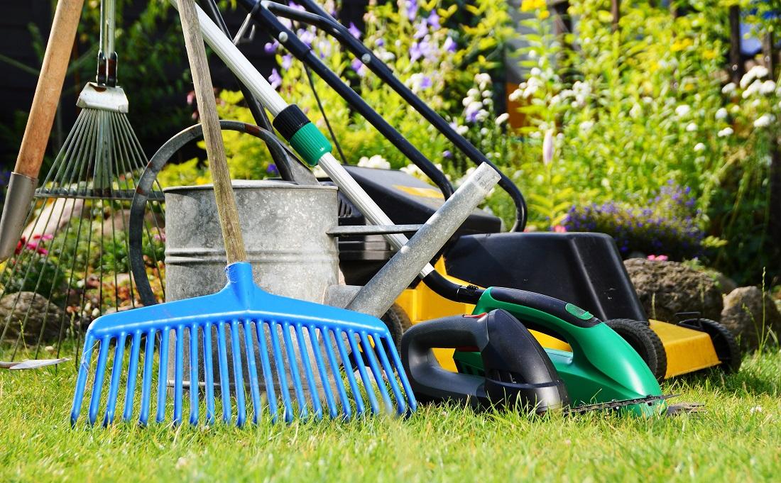 Tí najlepší pomocníci do vašej záhrady