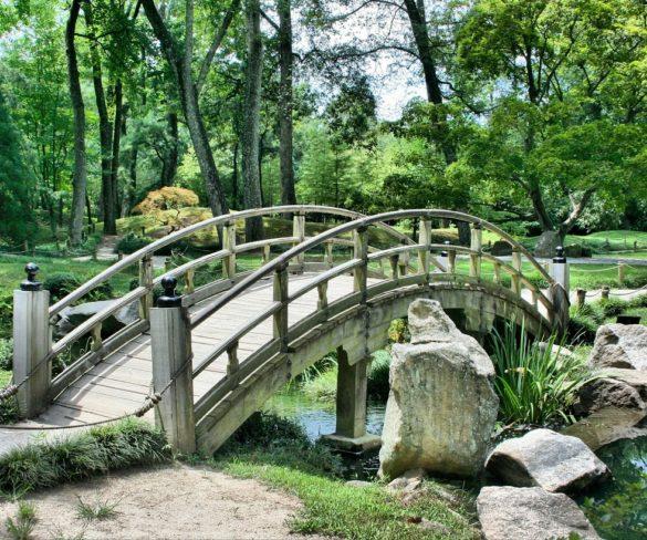 Výstavba záhradného jazierka nemusí byť príliš náročná