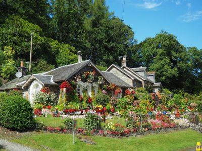 Na, čo myslieť pri plánovaní záhrady